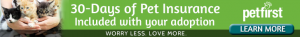 30Day-Cat-Web-Banner-Green