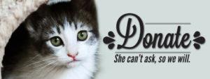Donate-Cat.jpg